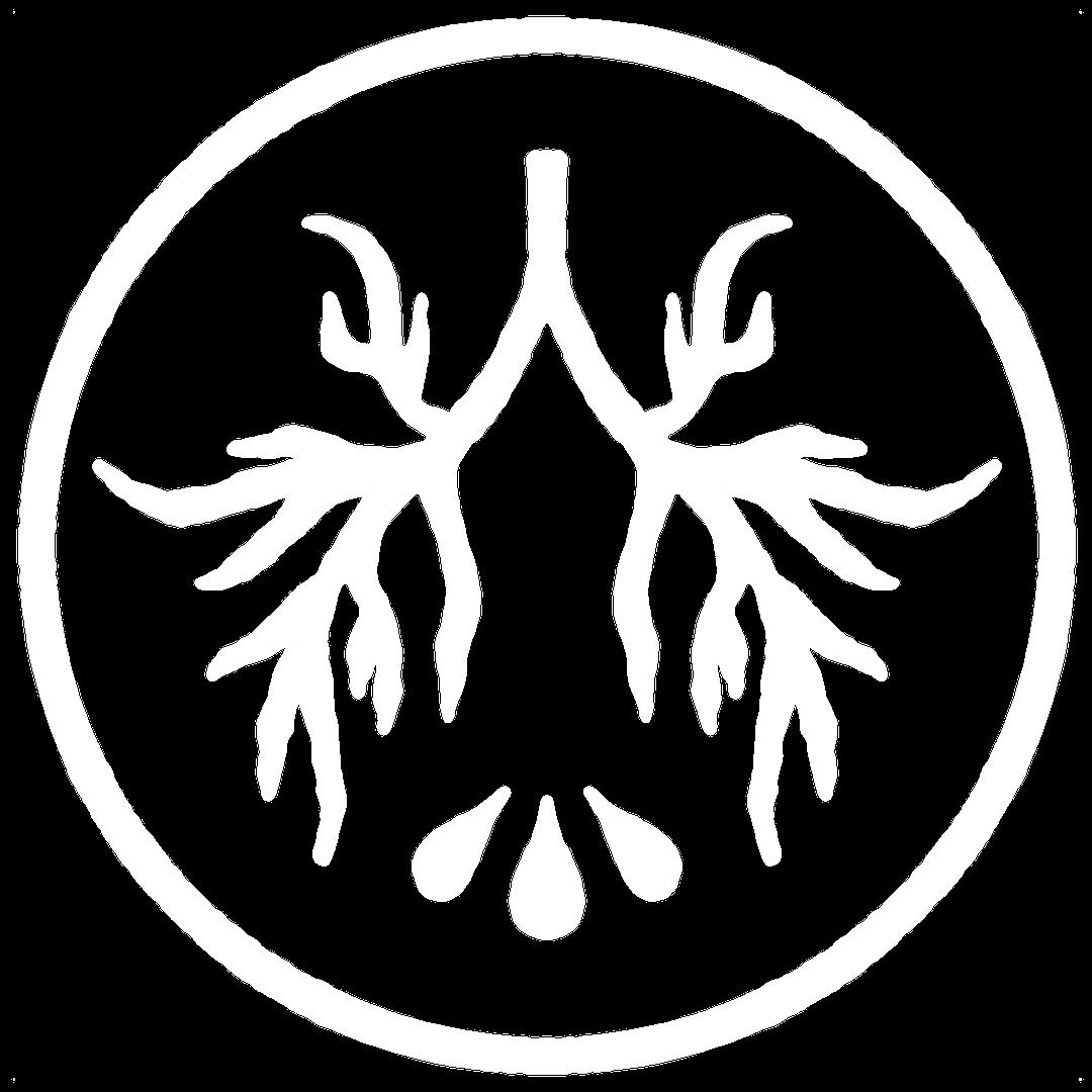 LTP Logo – White.png