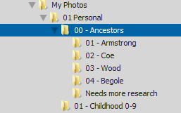 "I added some subfolders and a ""needs research"" folder for unidentified photos."