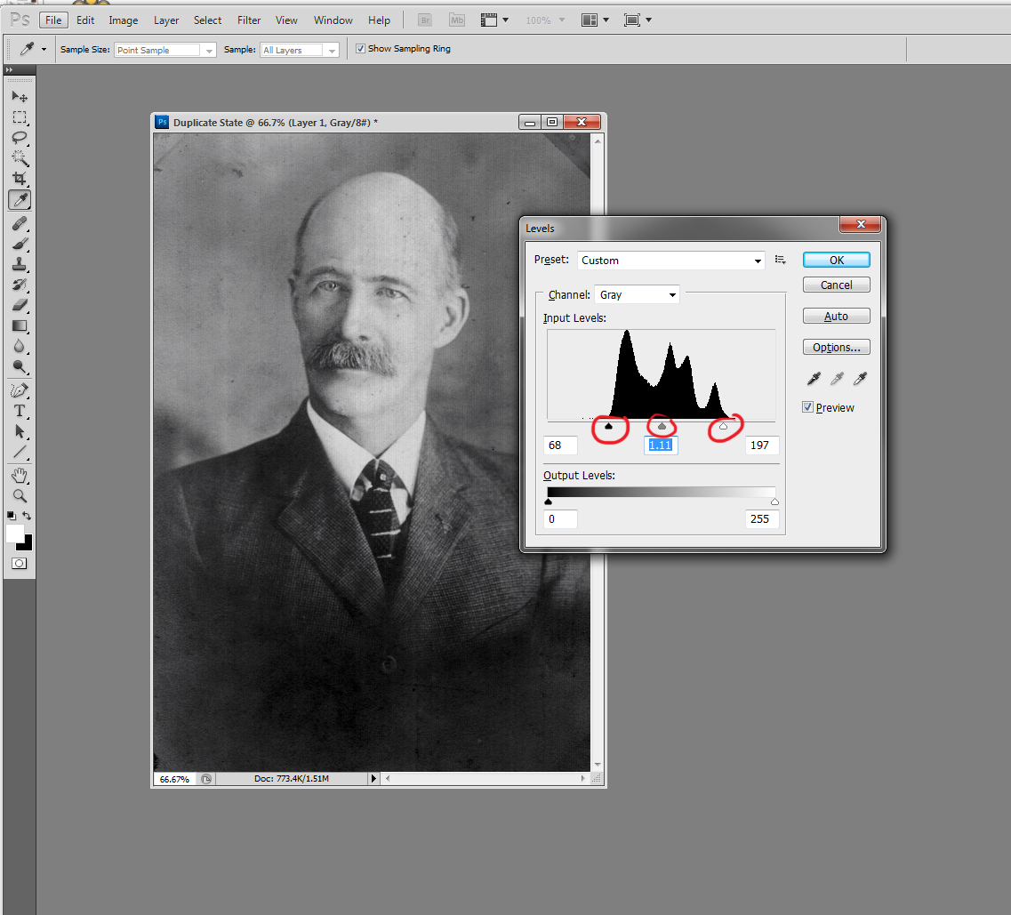 Now the sliders are closer to the edges of the histogram hills, and the contrast is much better.