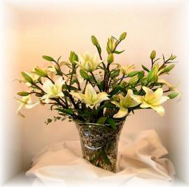 Lily vase.jpg