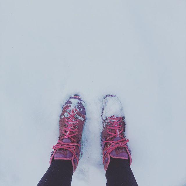 I miss you, winter. Please write. #coloradoweather #whytho #2018 #50injanuary ❄️😢🌙