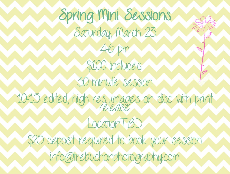 spring mini's.jpg