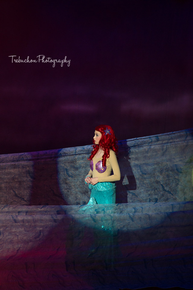 mermaid-11 web wm.jpg