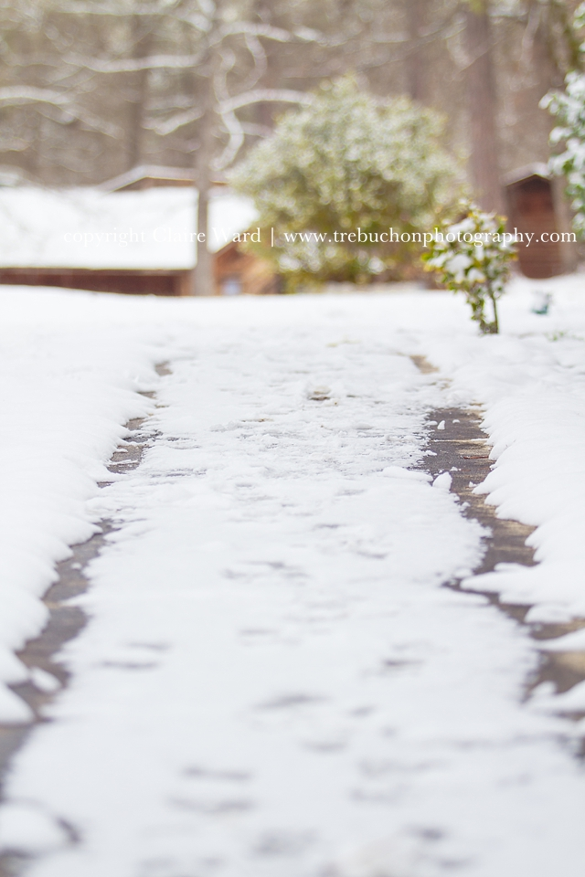 Snow Day | Columbia, SC Photographer