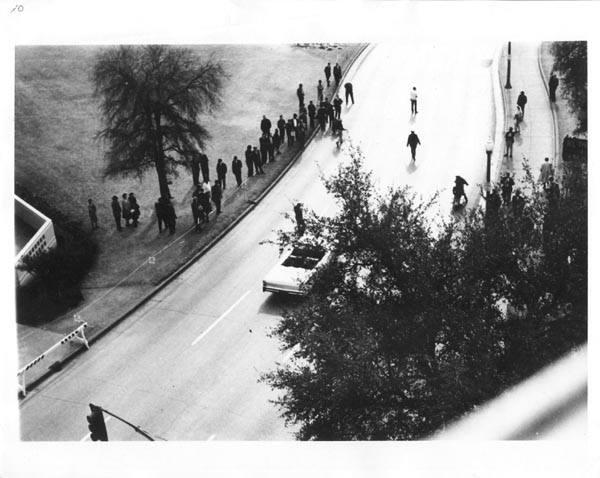 Photo 76- Elm Street under tree cover.jpg