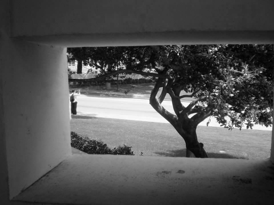 Photo 23- Eastern pergola view of Elm Street B&W.jpg
