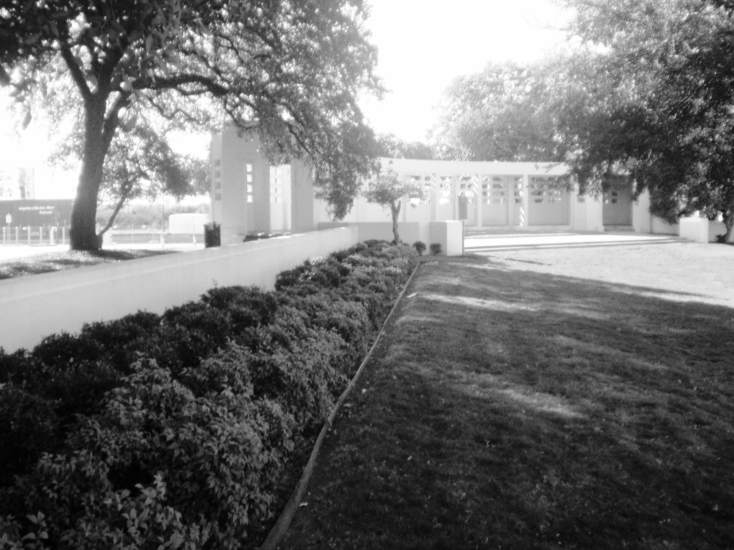 FS Pergola far shot BW.jpg