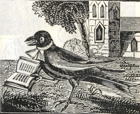 """An Image from the pages of A Myth called """"The Death and Burial of Cock Robin"""""""