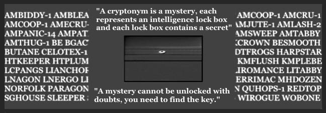 Crypt Mystery w-ver cryp back 3.png