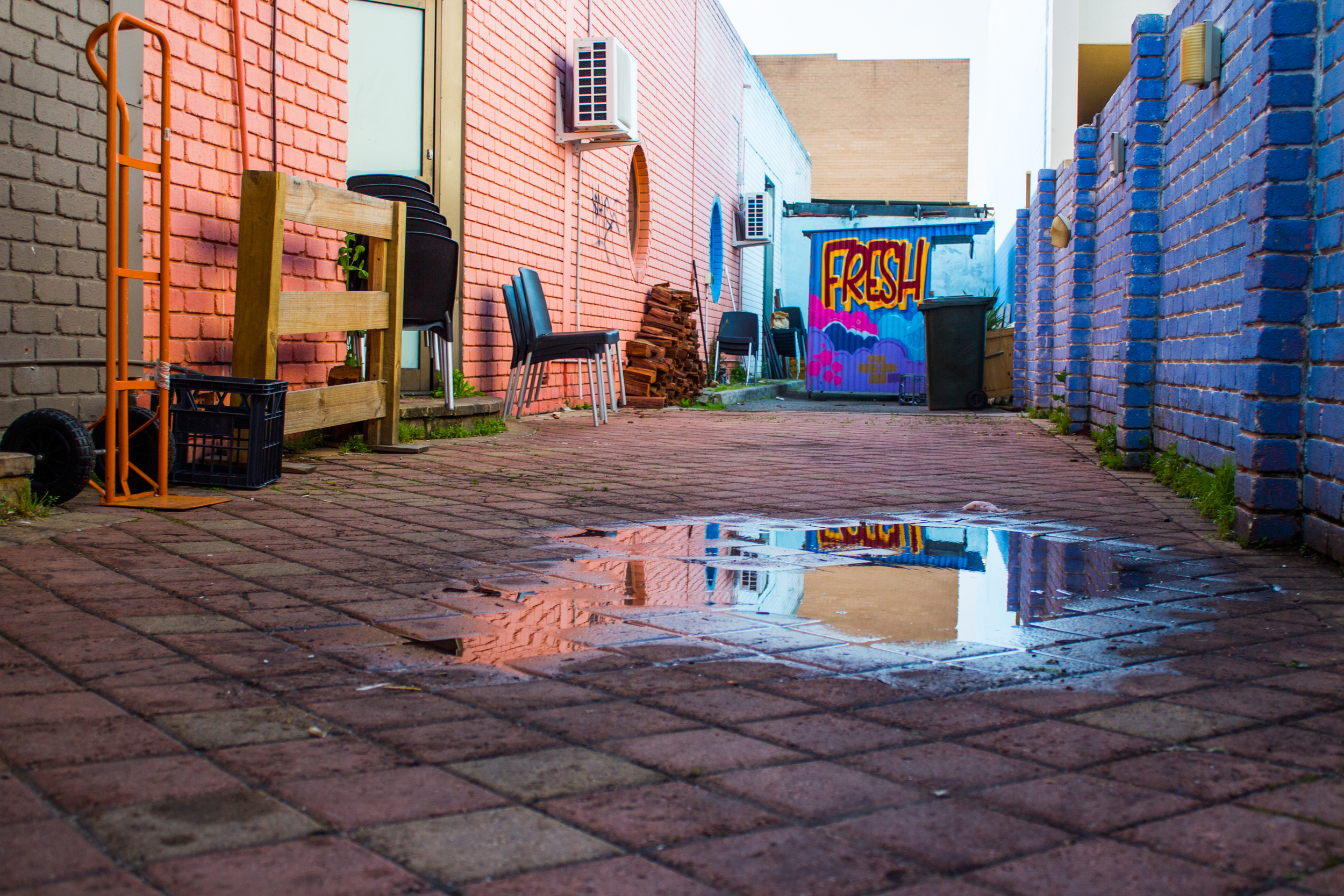 F-R-E-S-H: Reflections in puddles are the benefits of rain