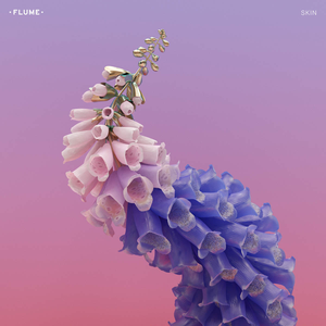 Skin  by Flume, with artwork from Jonathan Zawada
