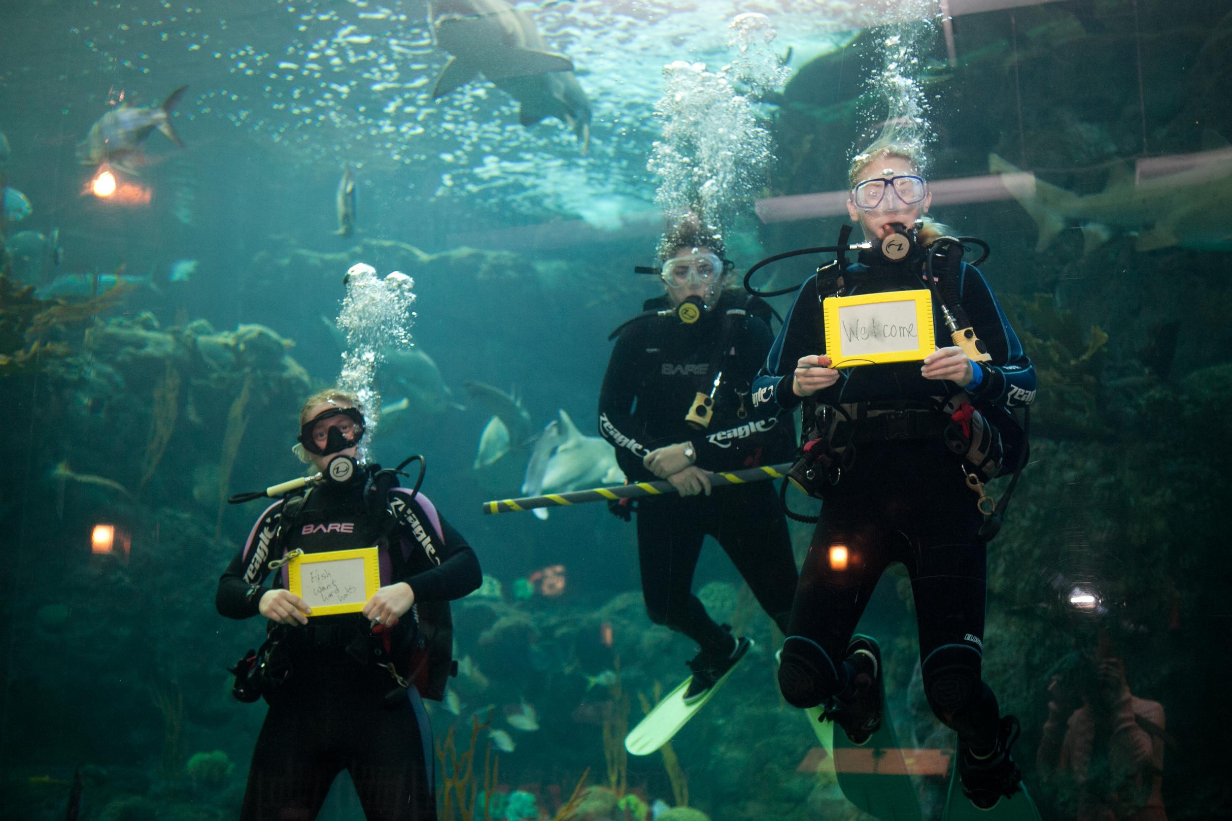 10_30_12 Aquarium Groundbreaking002.jpg