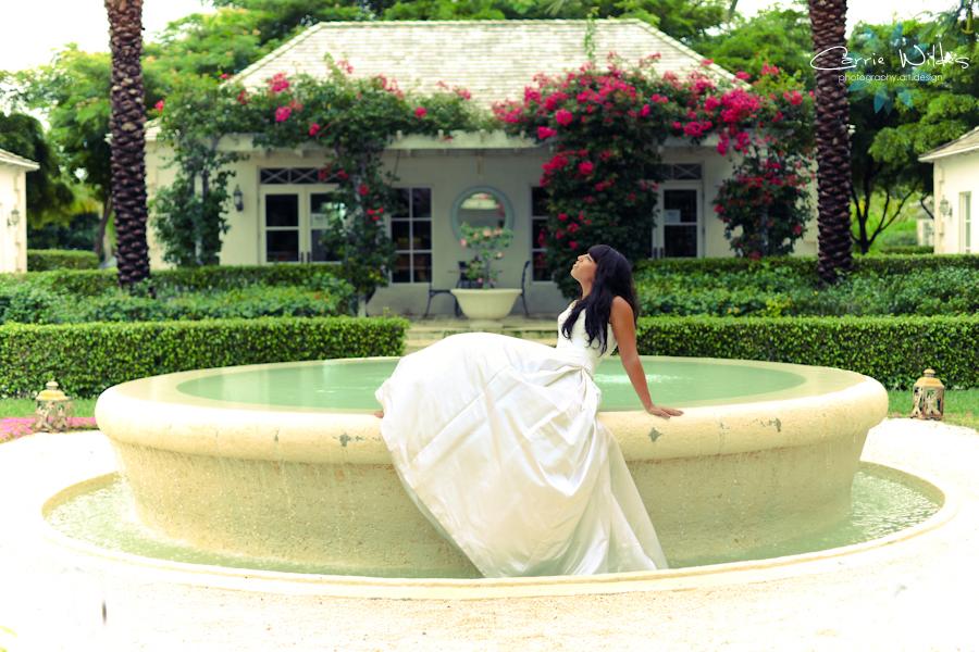 Turks and Caicos Wedding Turks and Caicos Trash the Dress0004.jpg
