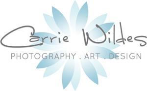 2013_logo_web_300px.jpg