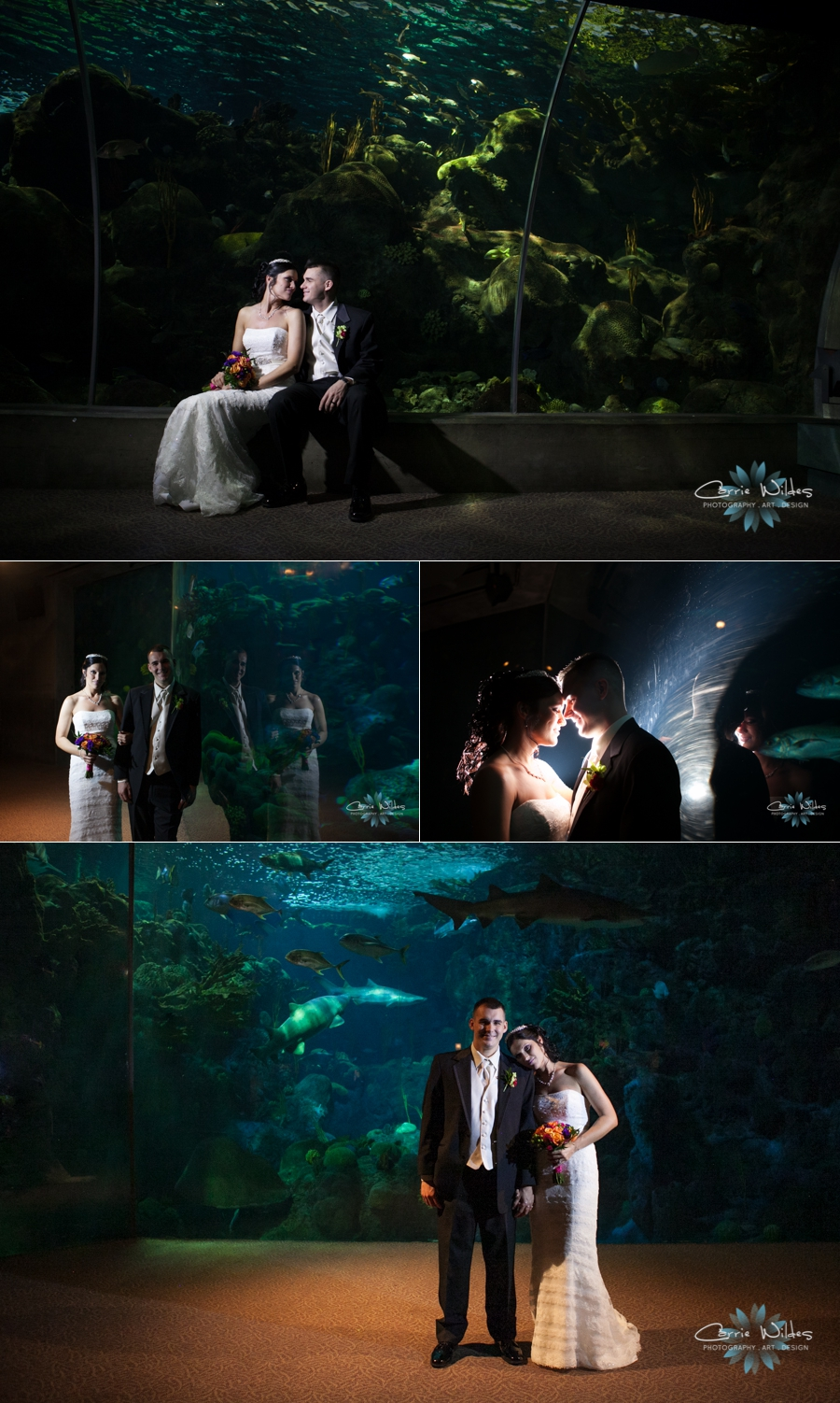 3_15_13 Florida Aquarium Wedding_0008.jpg