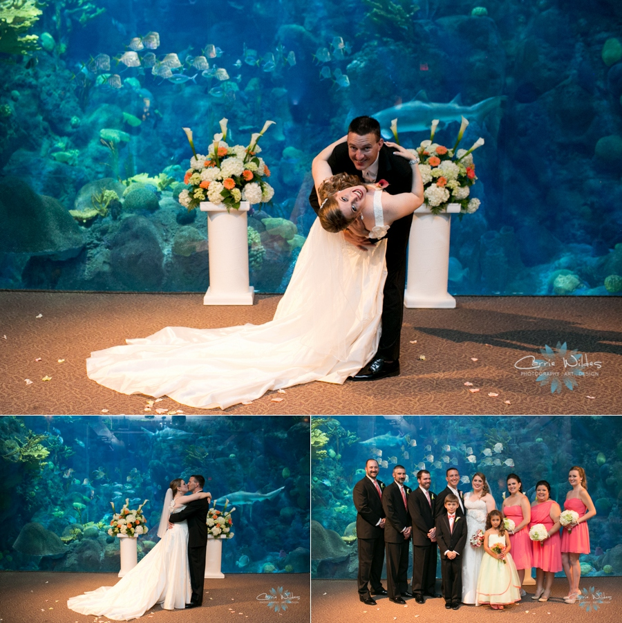 10_12_13 Florida Aquarium Wedding_0008.jpg