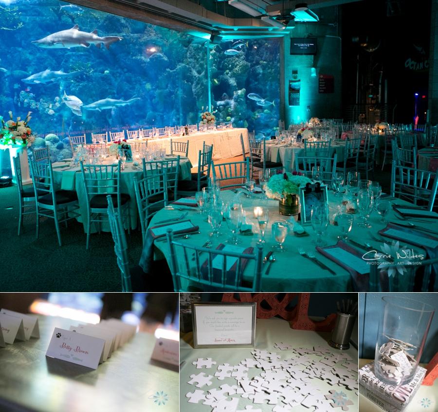 10_12_13 Florida Aquarium Wedding_0010.jpg