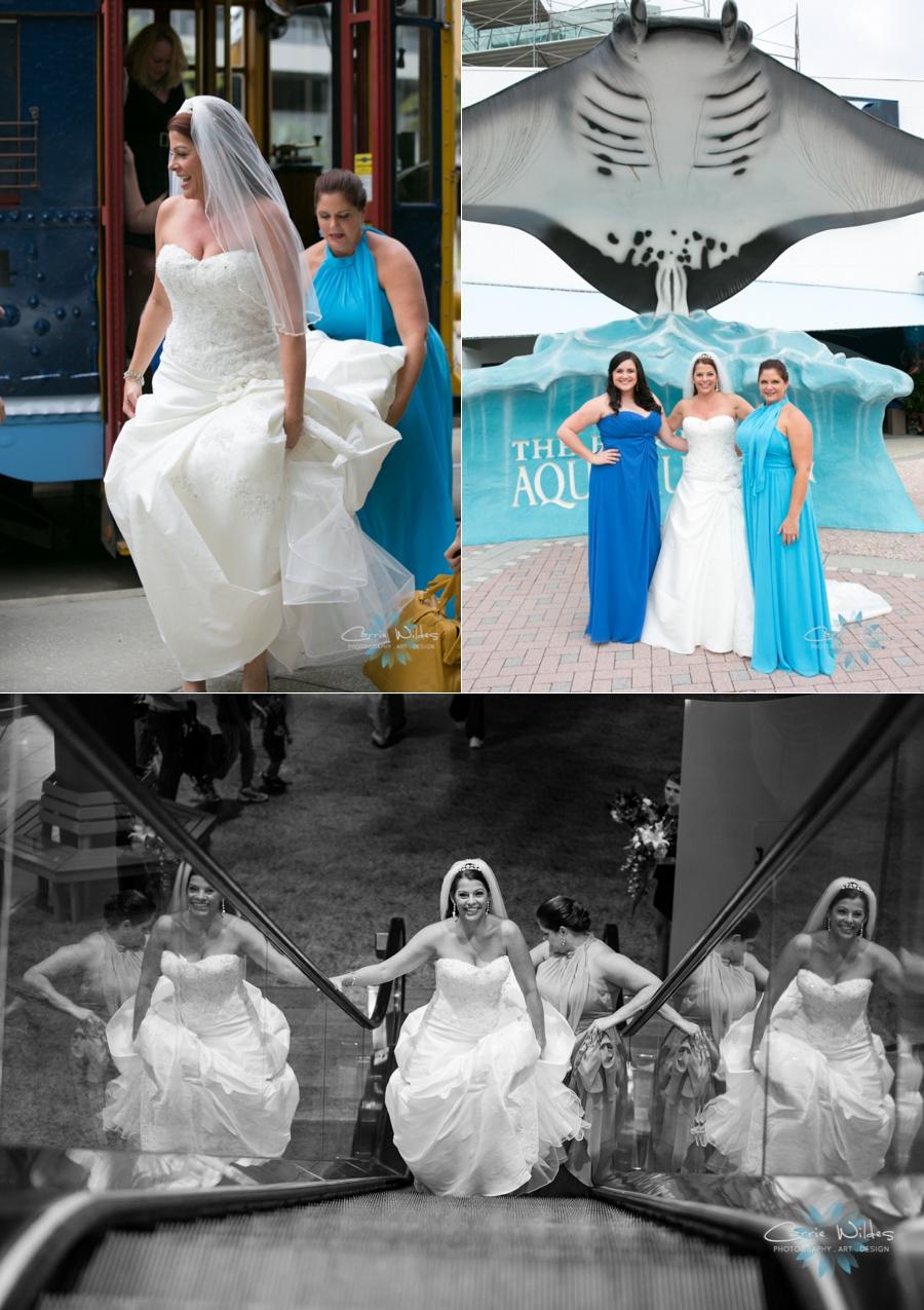 10_19_13 Florida Aquarium Wedding_0001.jpg