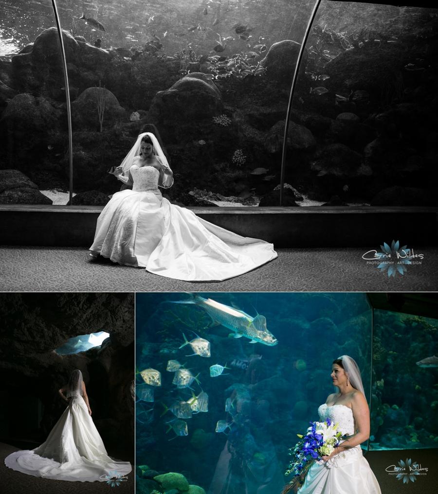 10_19_13 Florida Aquarium Wedding_0003.jpg