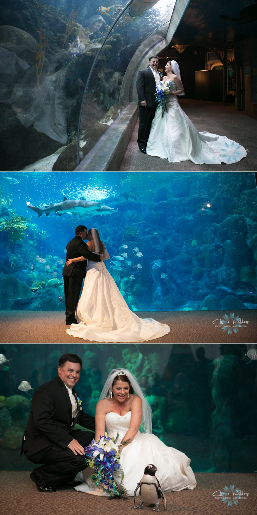 10_19_13 Florida Aquarium Wedding_0006.jpg