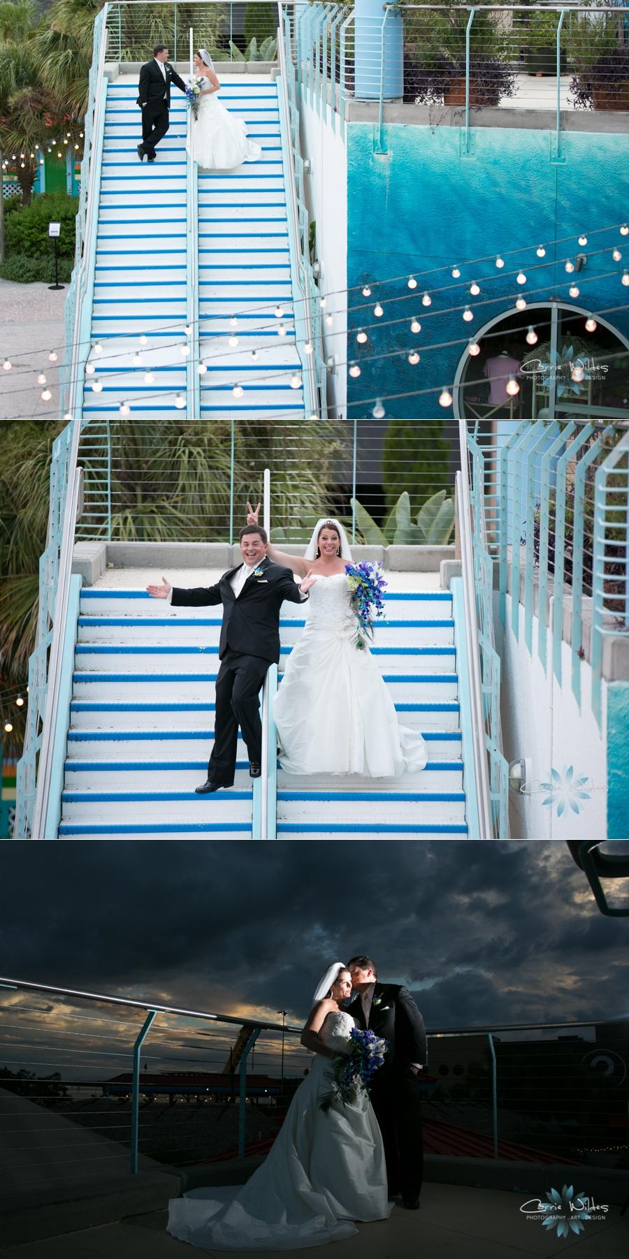 10_19_13 Florida Aquarium Wedding_0009.jpg