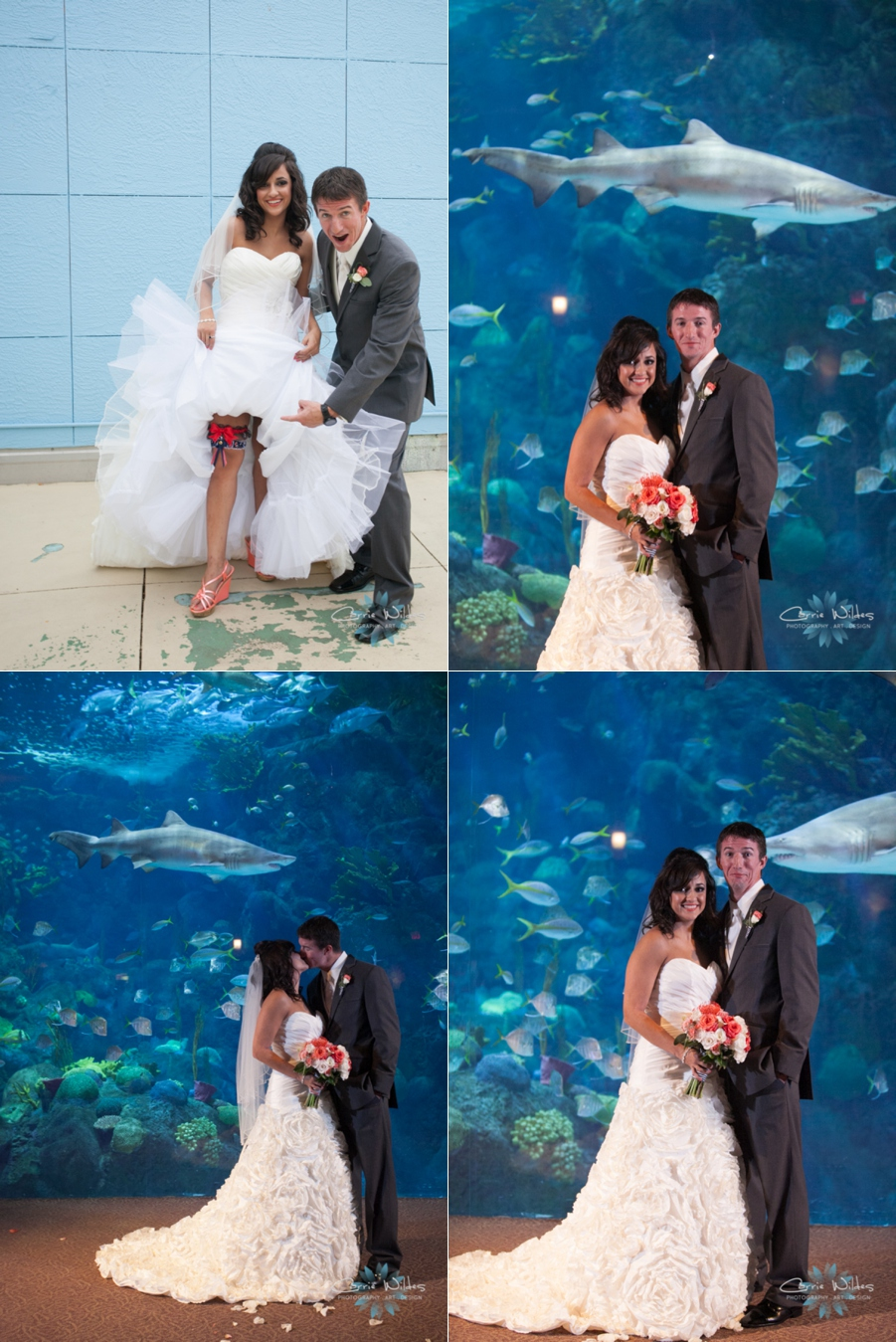 11_2_13 Florida Aquarium Wedding_0007.jpg