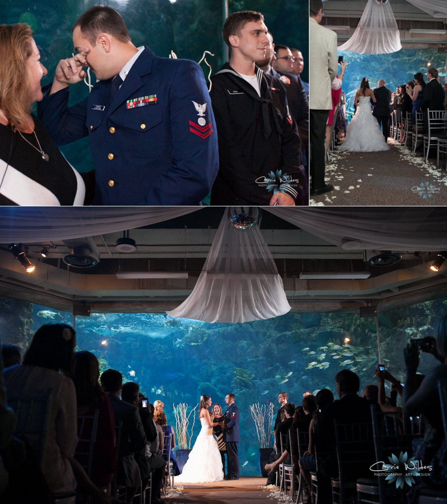11_16_13 Florida Aquarium Wedding_0013.jpg