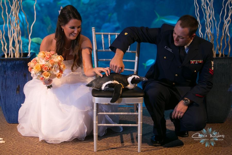 11_16_13 Florida Aquarium Wedding_0014.jpg