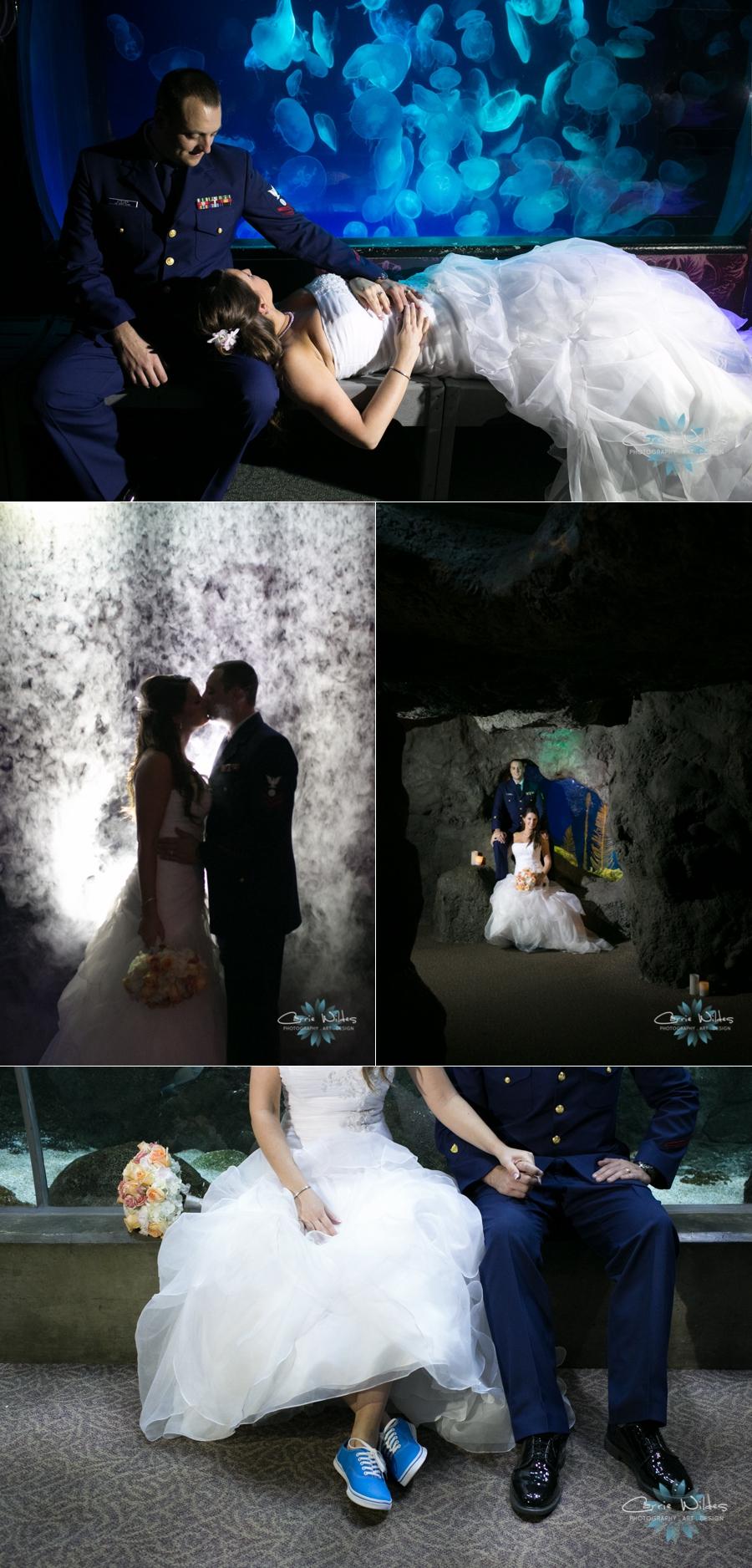 11_16_13 Florida Aquarium Wedding_0019.jpg