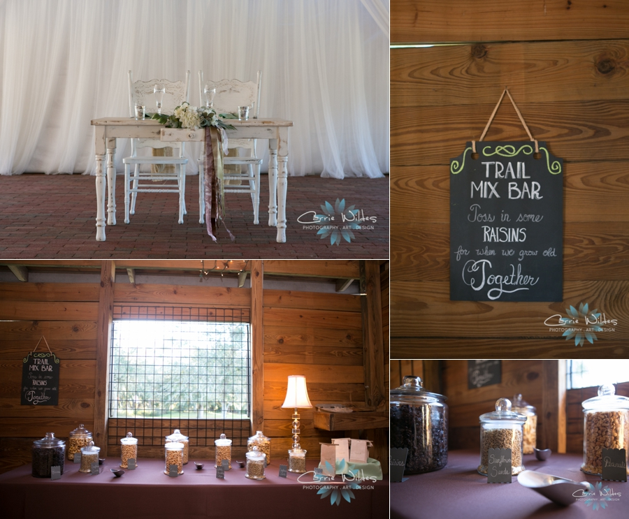 12_7_13 Cross Creek Ranch Wedding_0011.jpg