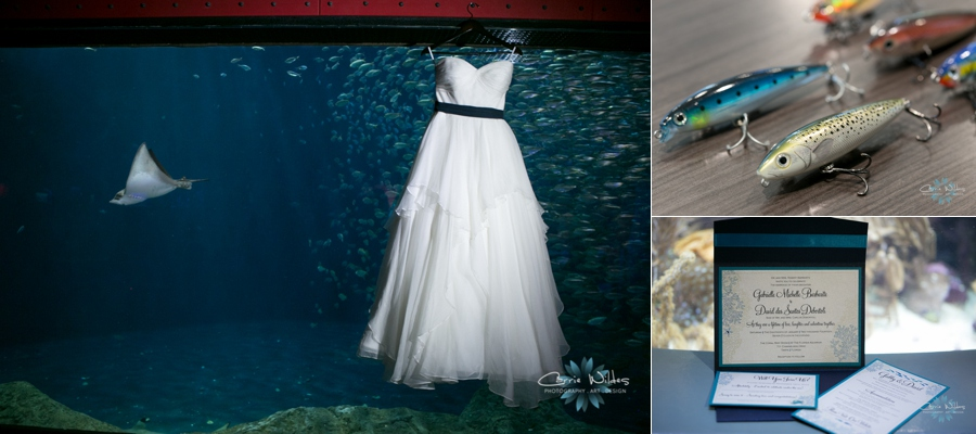 1_18_14Florida_Aquarium_Wedding_0001.jpg