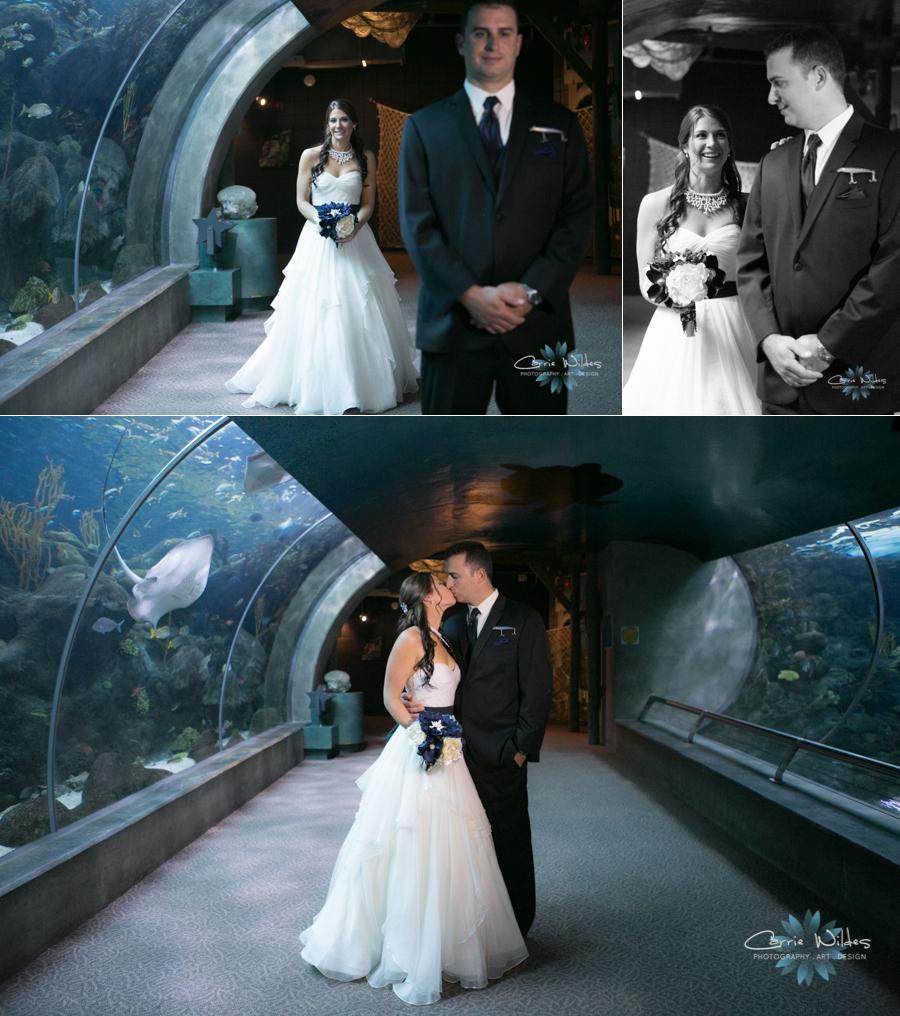 1_18_14Florida_Aquarium_Wedding_0004.jpg