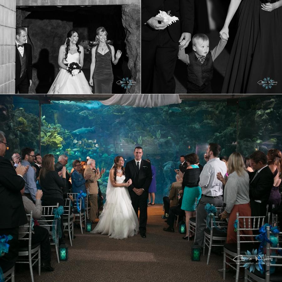 1_18_14Florida_Aquarium_Wedding_0009.jpg
