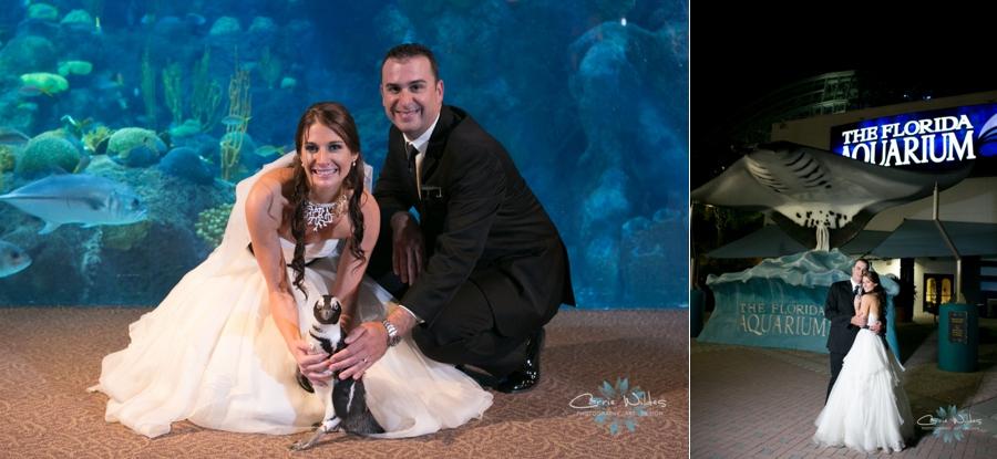 1_18_14Florida_Aquarium_Wedding_0010.jpg