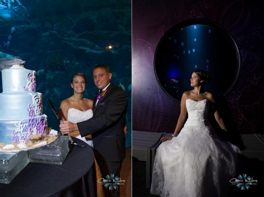 7_19_14_Florida_Aquarium__0025.jpg