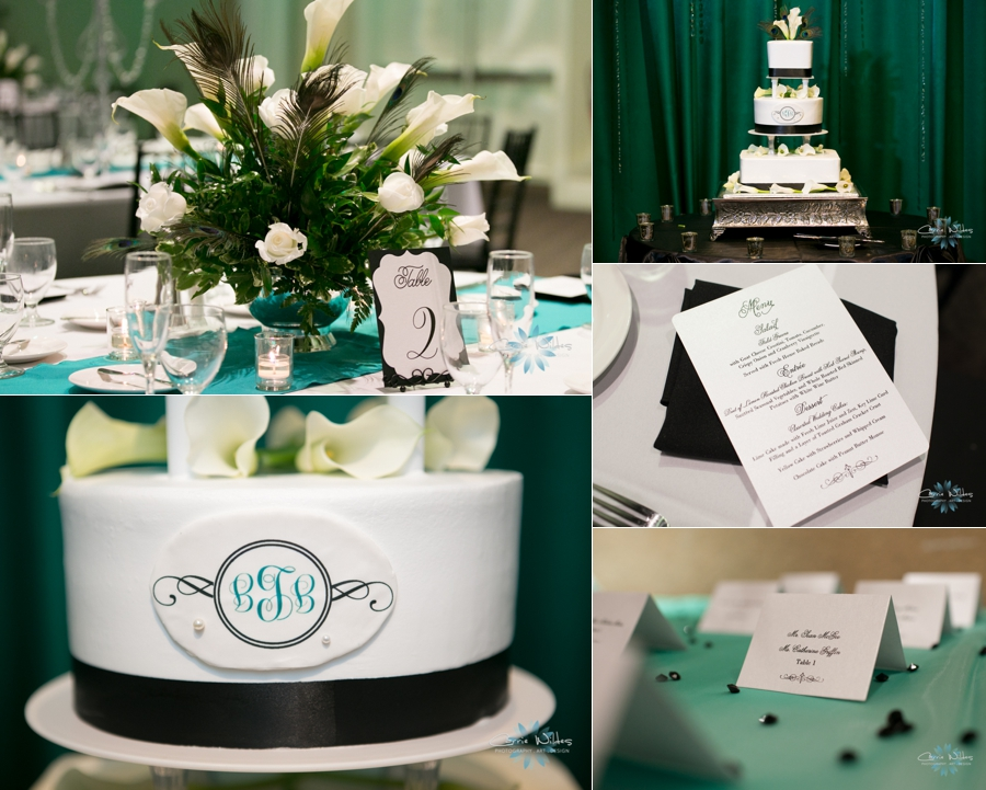 8_9_14 A La Carte Event Pavilion Wedding_0009.jpg
