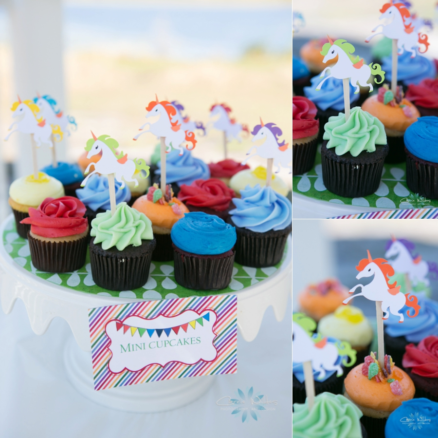 2_15_15 1 Year Old Birthday_0010.jpg
