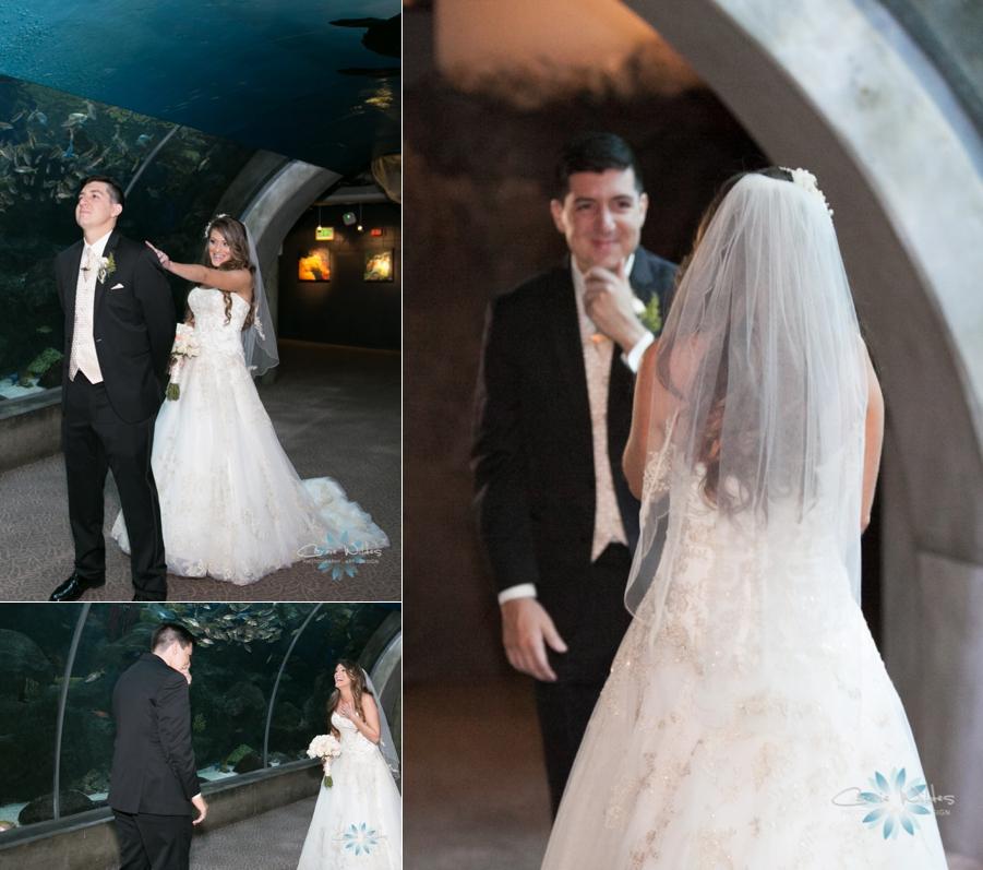 2_14_15 Florida Aquarium Wedding_0009.jpg