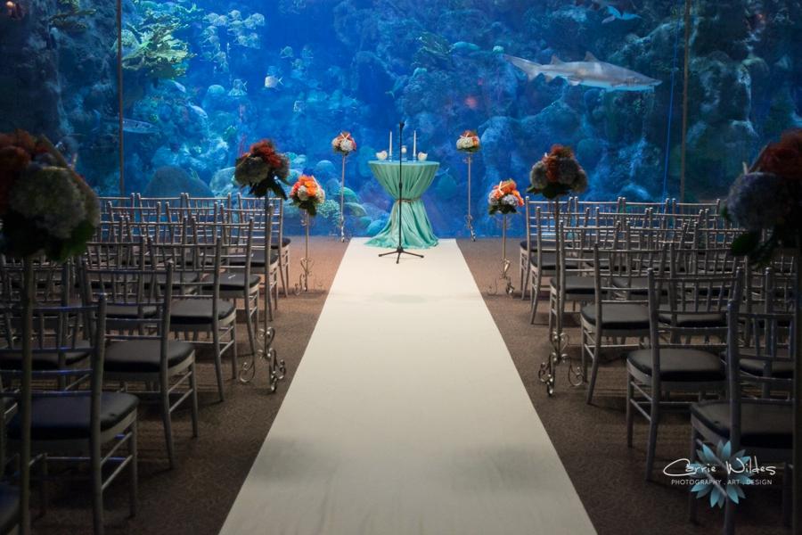 2_14_15 Florida Aquarium Wedding_0012.jpg