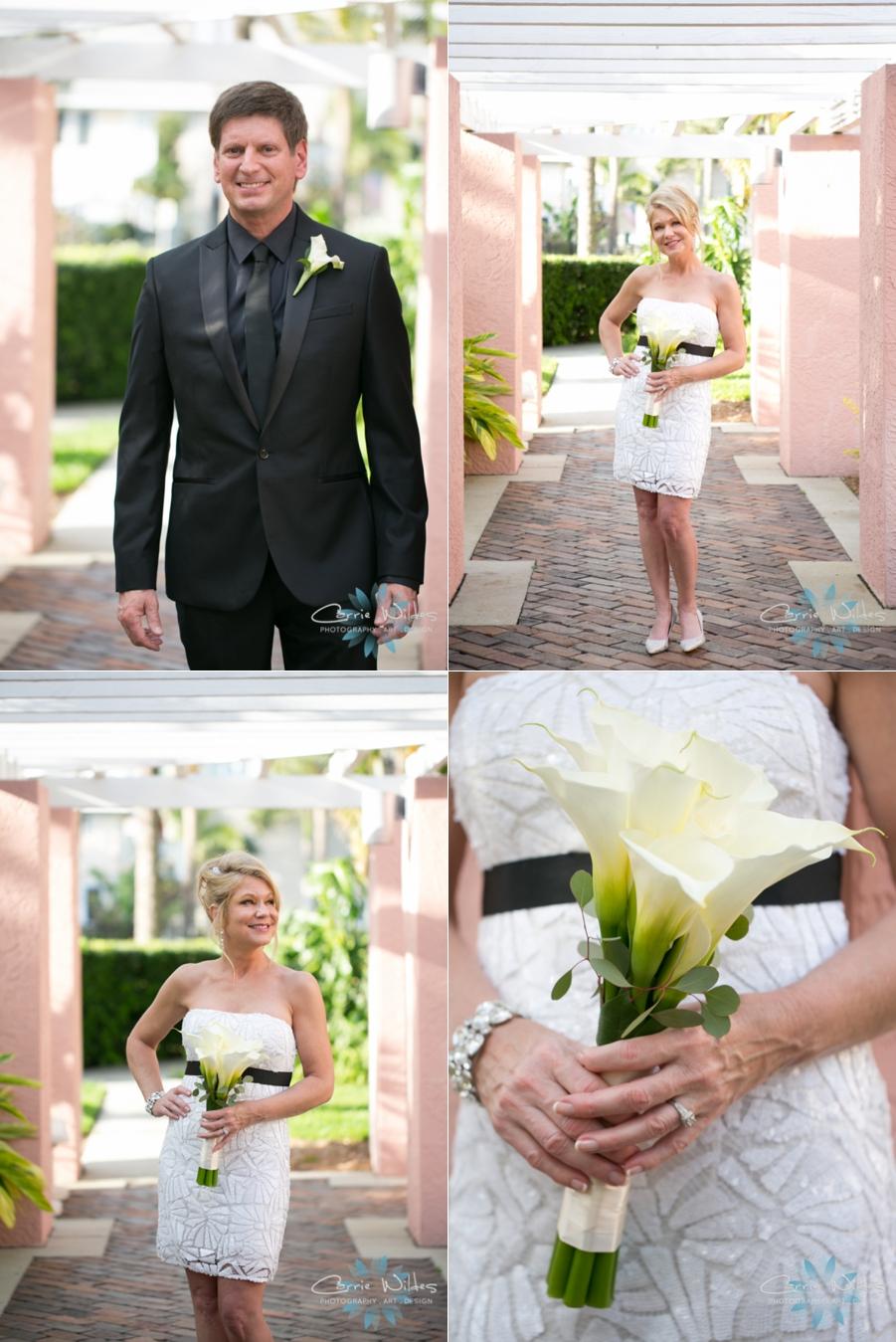 3_12_15 Renaissance Vinoy Wedding_0003.jpg