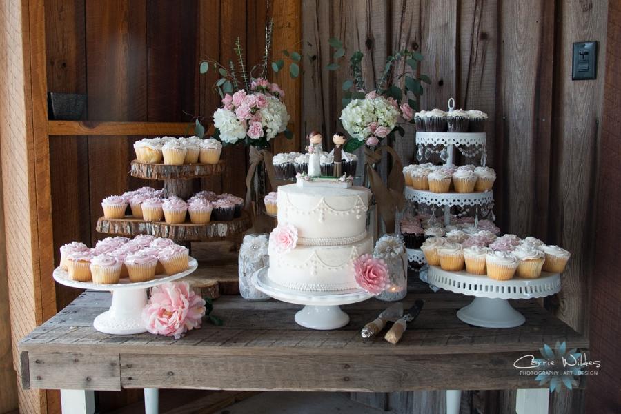 4_25_15 Wishing Well Barn Wedding_0033.jpg