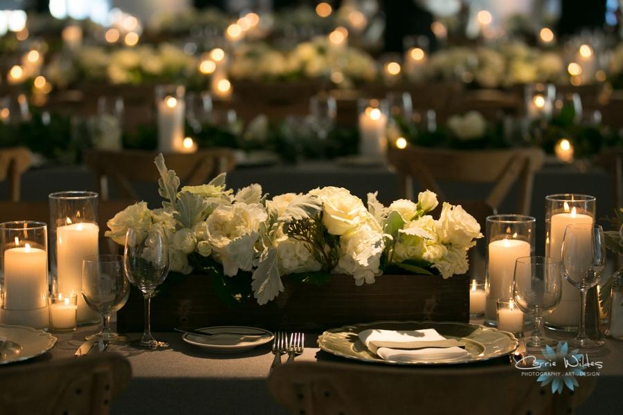 5_2_2015 Gasparilla Inn Wedding_0054.jpg