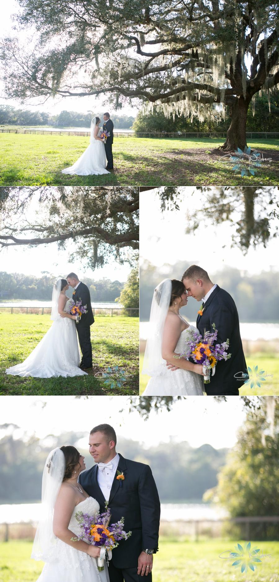 11_7_15 Tampa Horse Ranch Wedding_0019.jpg
