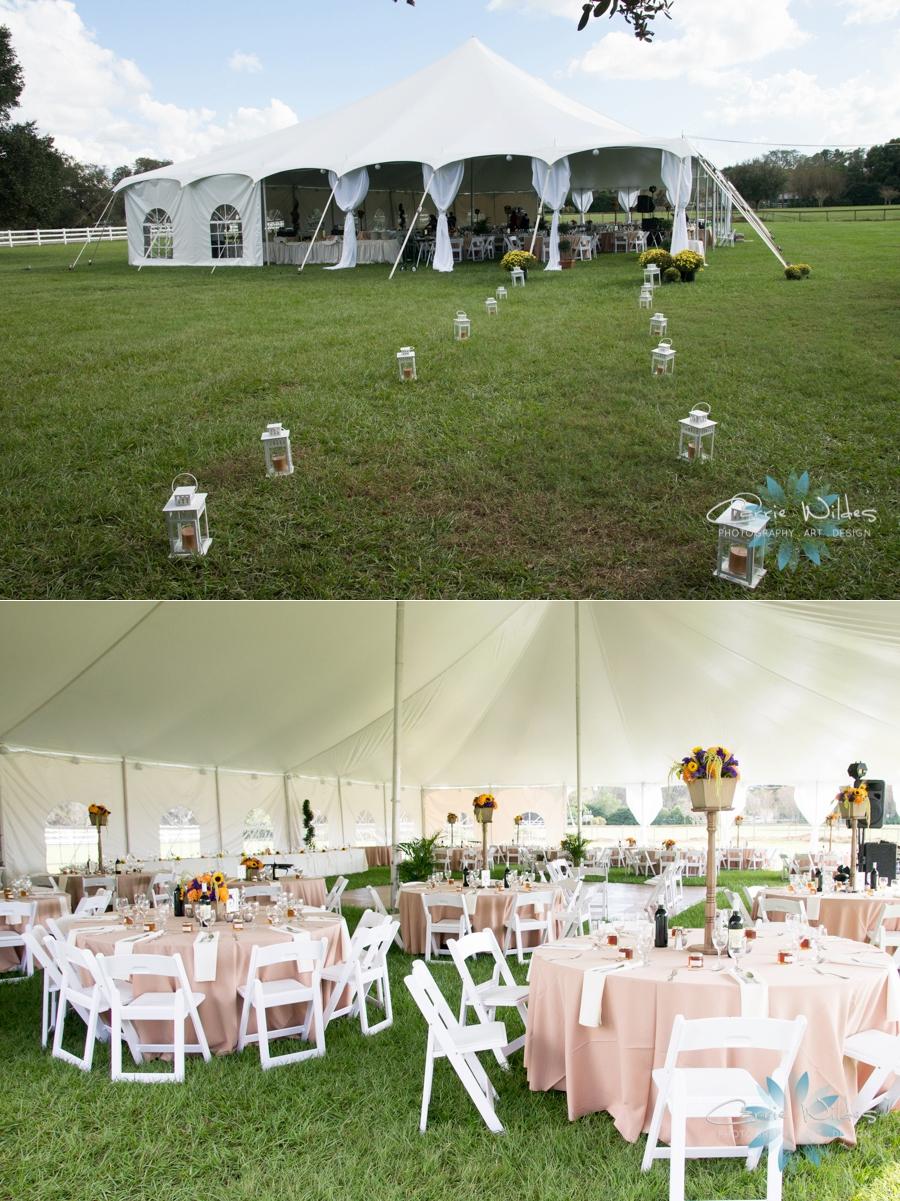 11_7_15 Tampa Horse Ranch Wedding_0021.jpg