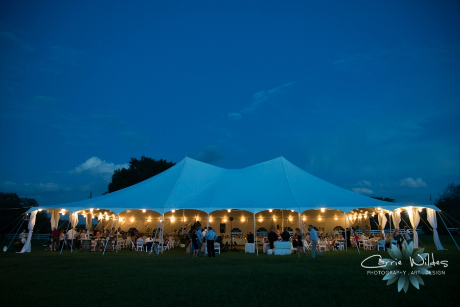11_7_15 Tampa Horse Ranch Wedding_0032.jpg