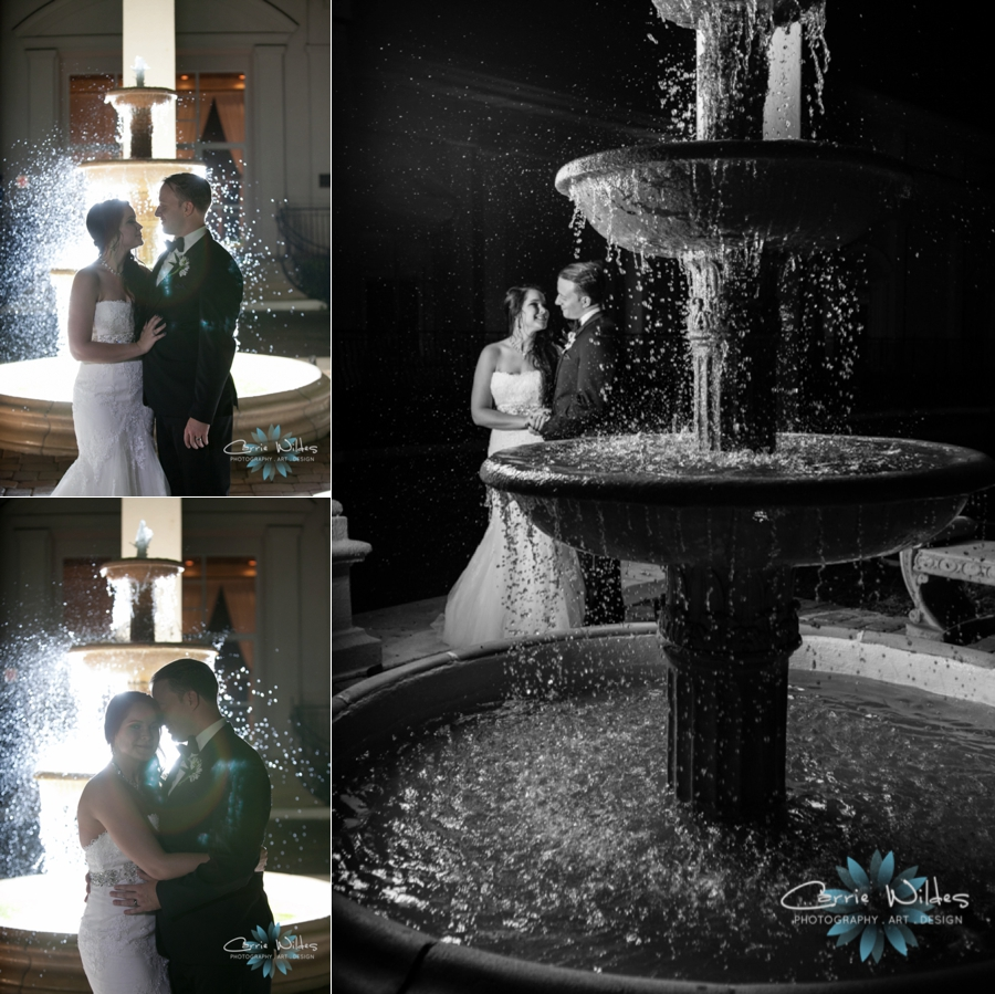 11_14_15 Ala Carte Event Pavilion Wedding_0038.jpg