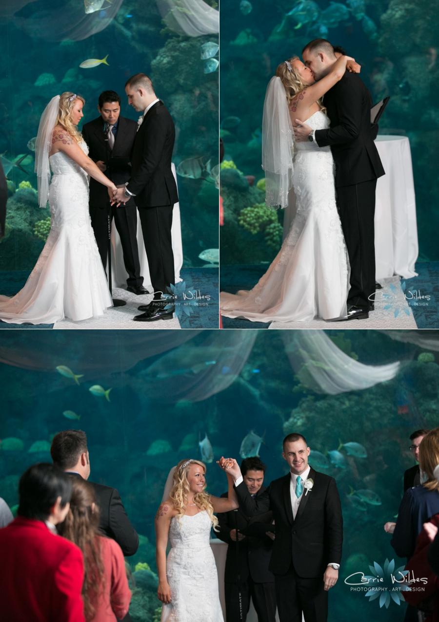 1_15_16 Florida Aquarium Wedding_0003.jpg