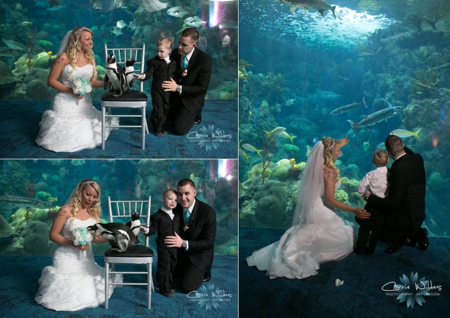 1_15_16 Florida Aquarium Wedding_0005.jpg