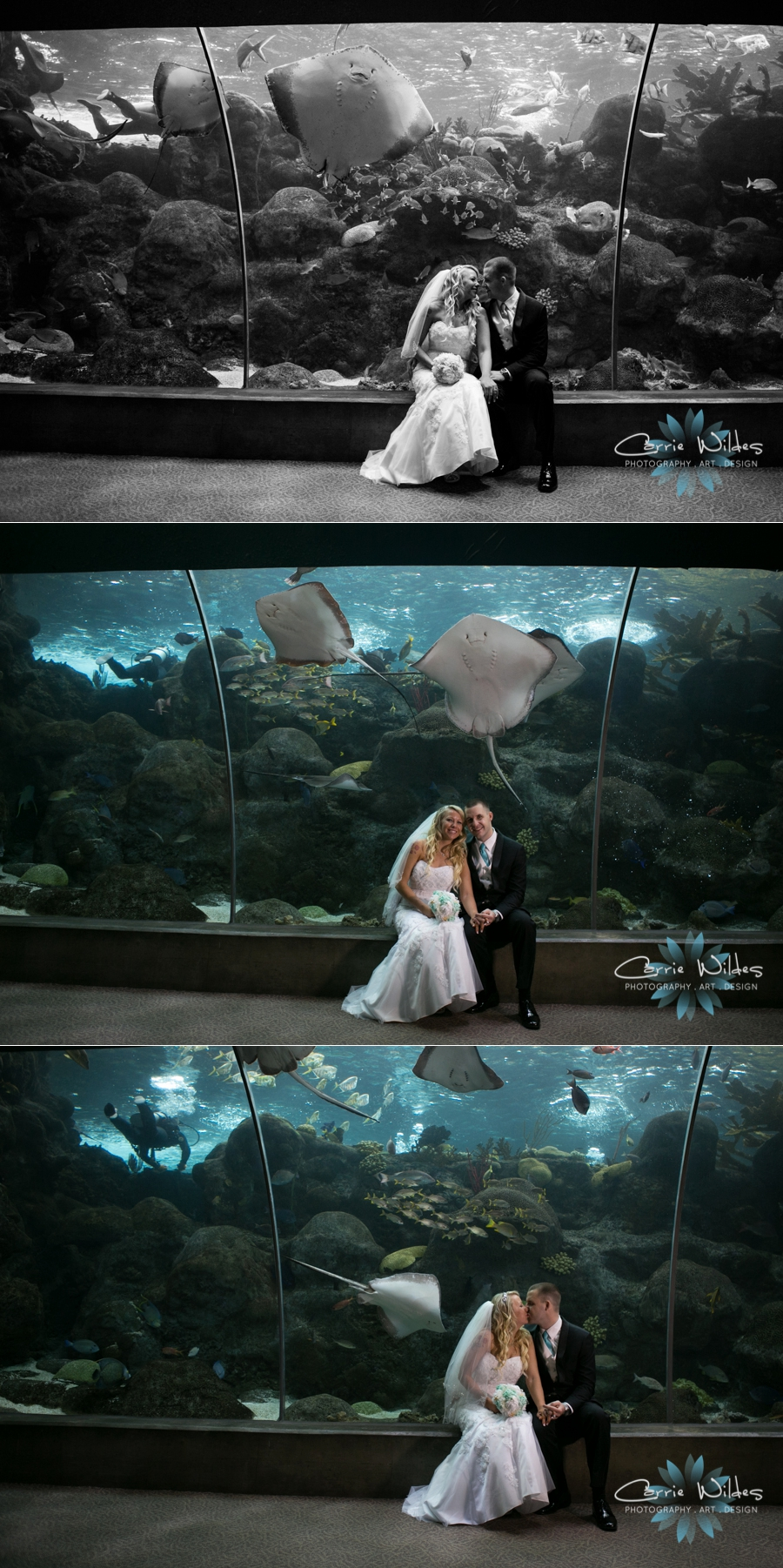 1_15_16 Florida Aquarium Wedding_0009.jpg