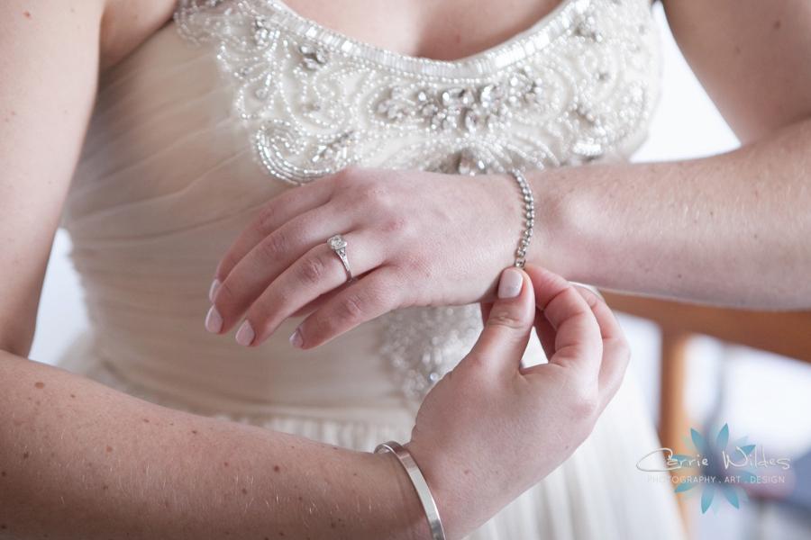 1_23_16 Grand Plaza Wedding_0007.jpg
